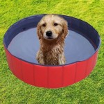 Golden-TulipHunde-POOL-Doggy-Pool-Hundepool-120x30-120042-0