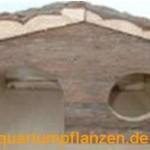 3-x-Meerschwein-Waldhaus-Haus-Htte-Huschen-0