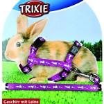 Trixie-6263-Kaninchengarnitur-stufenlos-verstellbar-25-44-cm10-mm120-m-0