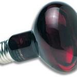 Zoo-Med-RS-75E-Nocturnal-Infrarot-Strahler-75W-Wrmequelle-und-Beleuchtung-fr-Terrarien-0