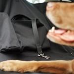 AmazonBasics-Auto-Hngematte-fr-Hunde-0