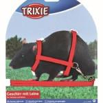 Trixie-Geschirr-aus-Nylon-mit-Leine-fr-FrettchenRatten-1225-cm-x-8-mm-0