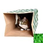 XIYAO-Katzen-Spielzeug-faltbarer-Rohr-Tunnel-in-der-dauerhaften-Fertigkeit-und-Katzenminze-Papier-24--105--86-Zoll-0